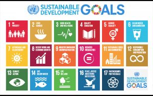 sustainable development goals 300x188 - Puesta en marcha de nuestra web de programas de salud